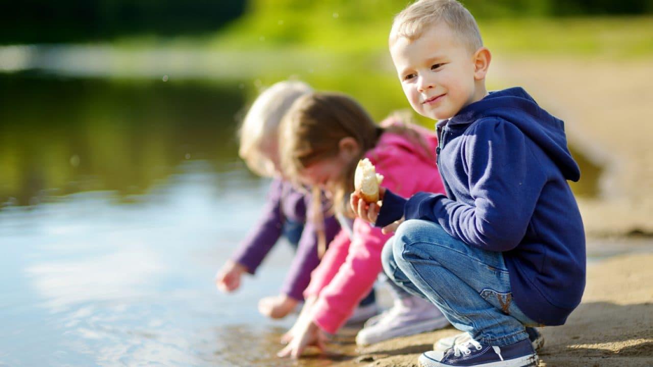 prevenirea viermilor la copii dacă