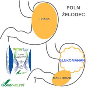 naturfiber-glukomanan_hujšanje