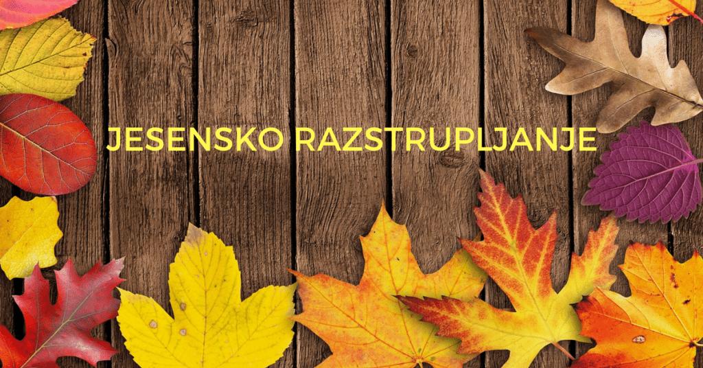 JESENSKO RAZSTRUPLJANJE_1